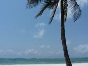 2010-09-07_11-31-38_0748galu_beach_diani_beach